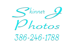 "Skinner J Photos ""Palm Coast Photographer"""